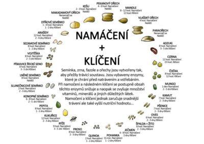 ovesna-kase-naslano-ovesne-vlocky-raw-namaceni-orechu-semen-veganske-recepty (5)