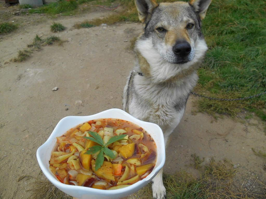 guláš s batáty a pes / veganské recepty