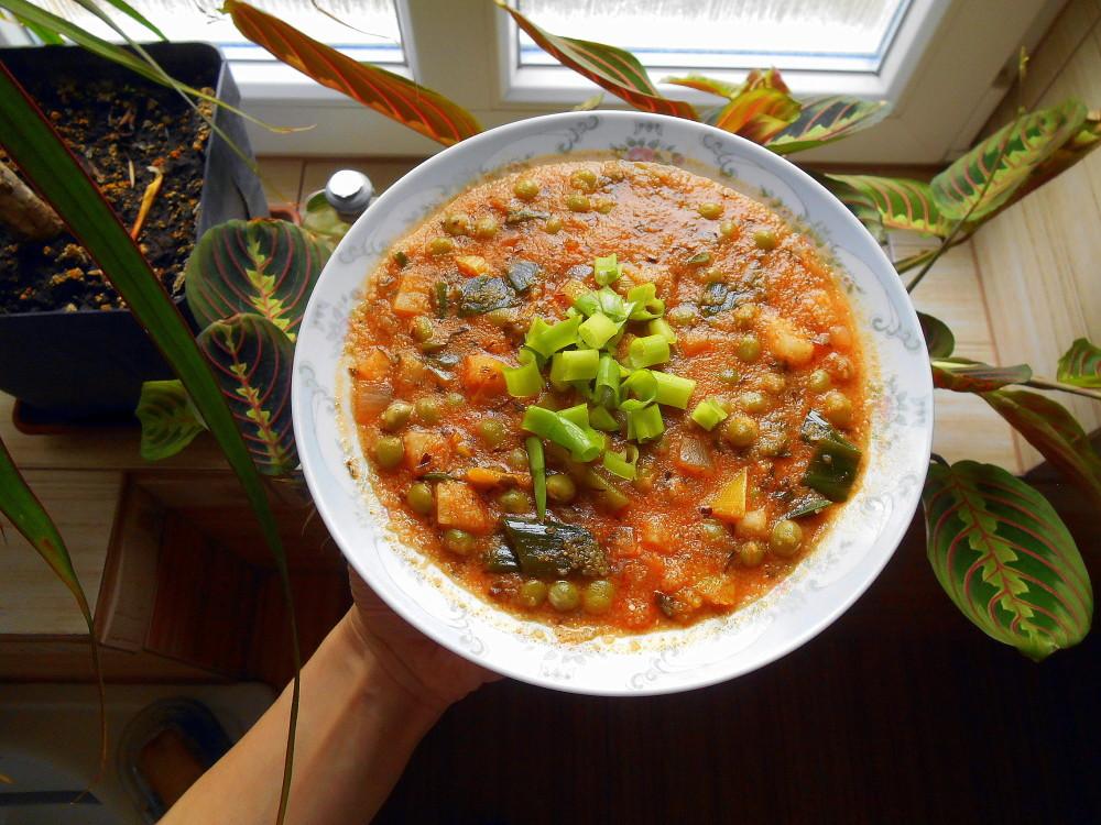 entopf mixit / veganské recepty
