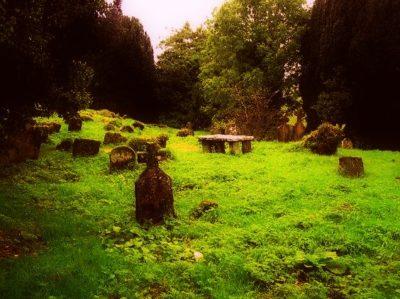 pohřebiště - starý hřbitov v lese - posvátný háj / smrt jak pohřbít