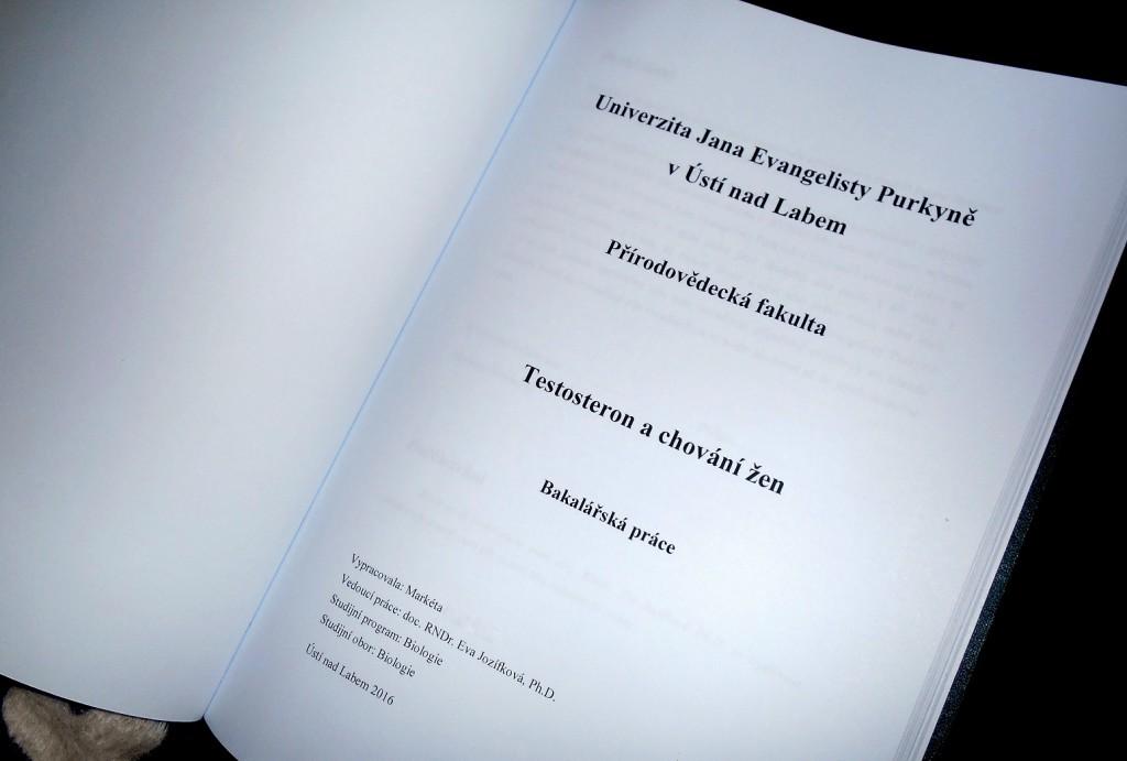 testosterone women bachelor thesis / testosteron a chování žen - bakalářská práce / miluna