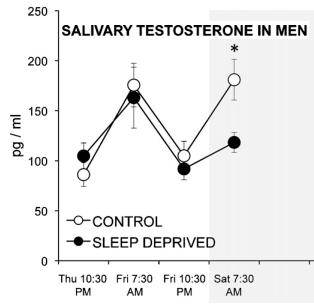 testosterone women men sleep