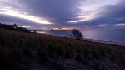tauranga-mount-maunganui-novy-zeland-working-holiday-prace