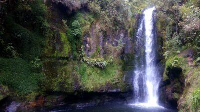 te-puke-kaiate-falls-novy-zeland